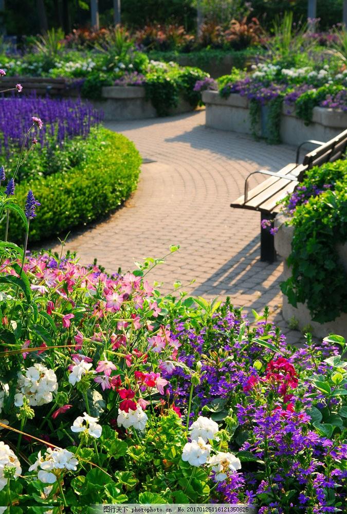 美丽花园风景 美丽花园风景图片素材 庭院风景 院子 美丽风景 风景
