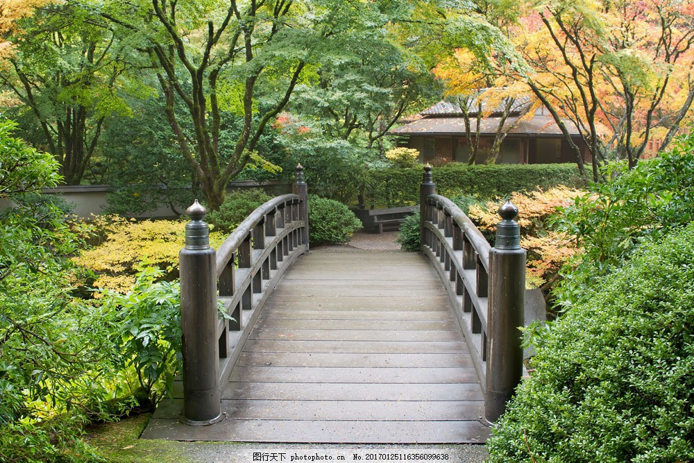 日本公园拱桥风景 日本公园拱桥风景图片素材 小桥风景 桥梁 美丽风景