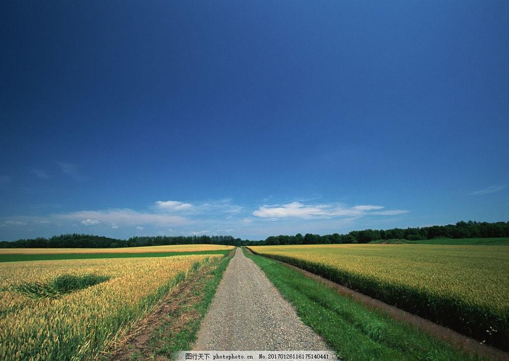 蓝天白云与道路风景 蓝天白云与道路风景图片素材 公路风景 马路风景