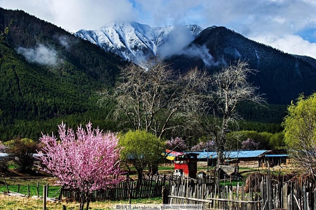 唯美 风景 风光 旅行 自然 西藏 林芝 美丽林芝 秀美林芝 生态林芝