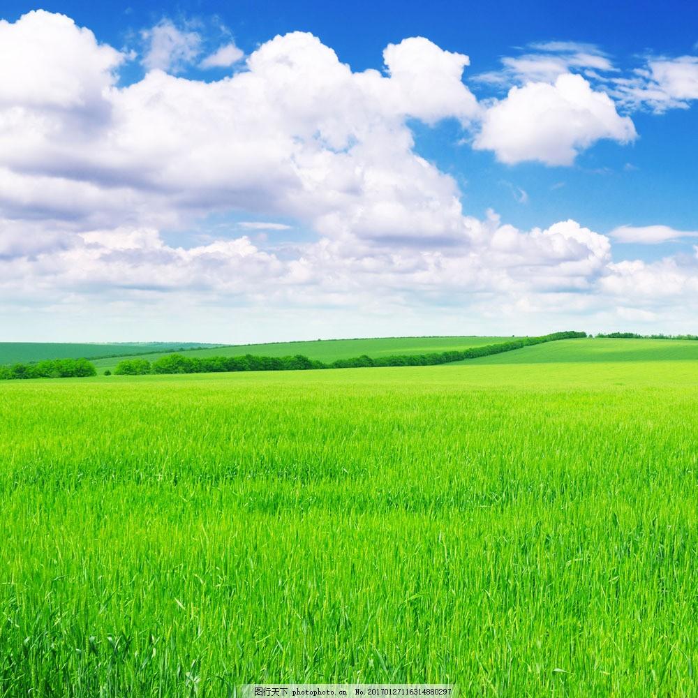 草原风景 草原风景图片素材 草地 蓝天 白云 草原风光 风景素材