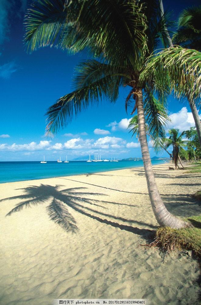 海岸风景图片素材 海 船 椰树 椰树倒影 沙滩 海滩 美景 美丽风景