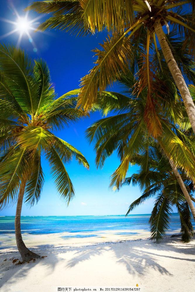 椰子树 沙滩 大海 蓝天白云 热带风光 自然风光 大海图片 风景图片