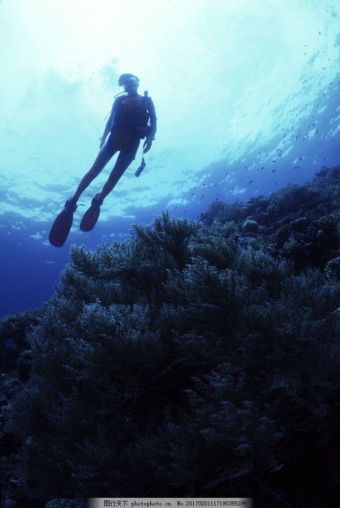 海底生物与潜水人员 海底生物与潜水人员图片素材 大海 潜水者 男女潜水员
