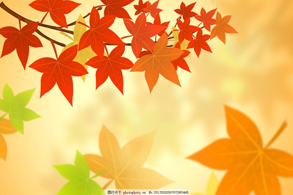 秋天枫叶背景墙 壁纸 风景 高分辨率图片 高清大图 建筑 装饰