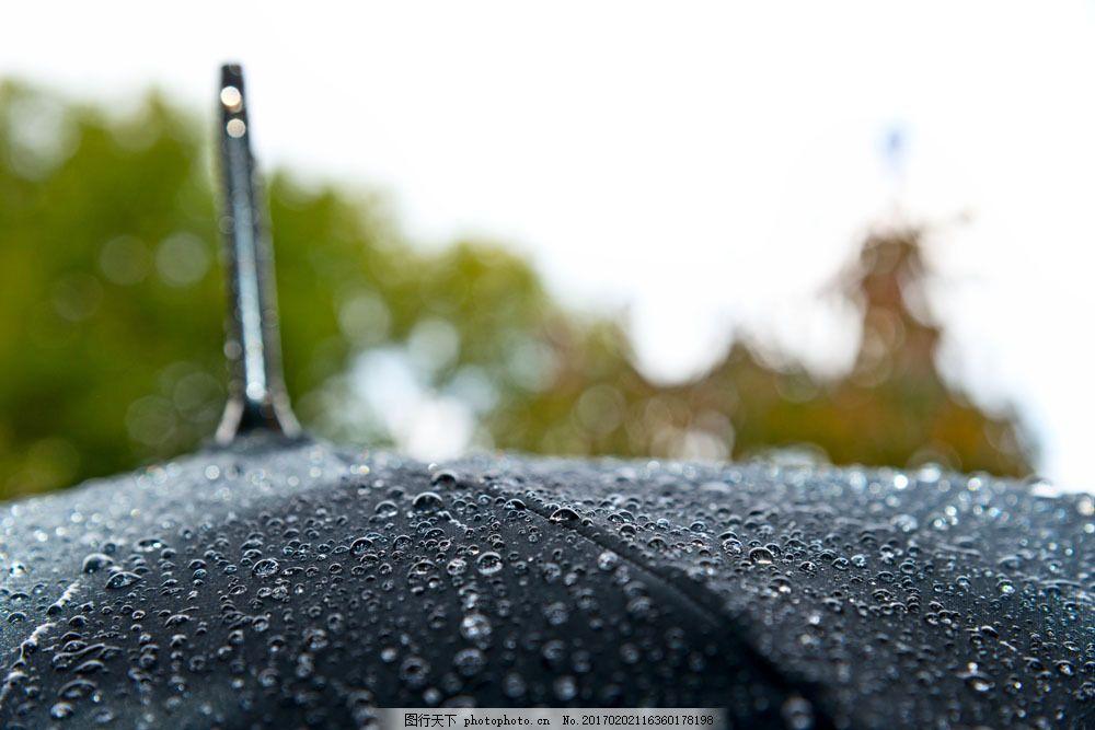 雨天的大伞 雨天的大伞图片素材 打伞 撑伞 雨水 雨滴 雨中 大雨