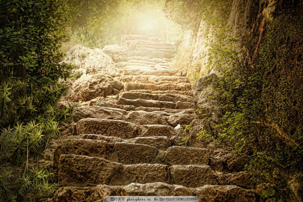 美丽石阶梯图片素材 阶梯 台阶 道路风景 美丽风景 美丽景色 美景