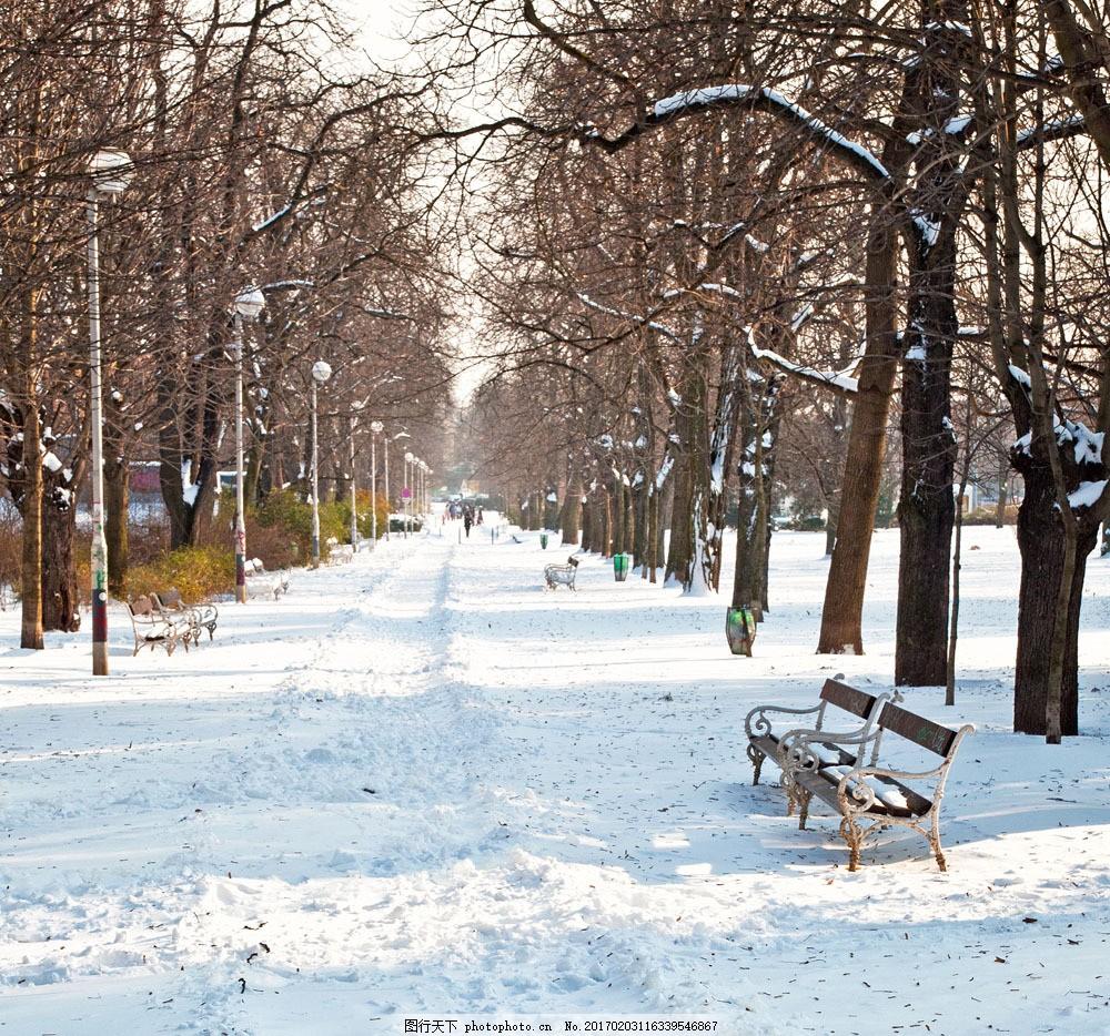 美丽公园道路风景图片