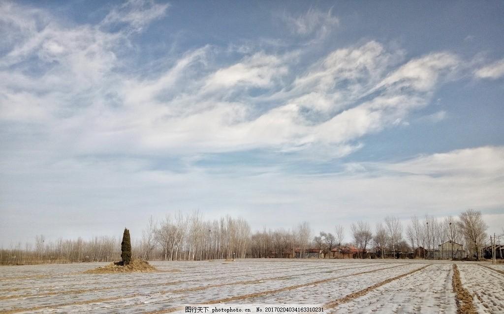 冬天的田野 蓝天 白云 农田 树木 冬天 农村 风景 手机摄影 摄影 自然
