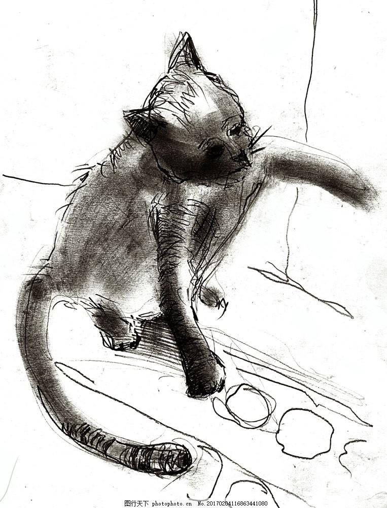 素描小猫图片素材 动物 动物世界 摄影图 素描 猫咪 小猫 绘画 铅笔画