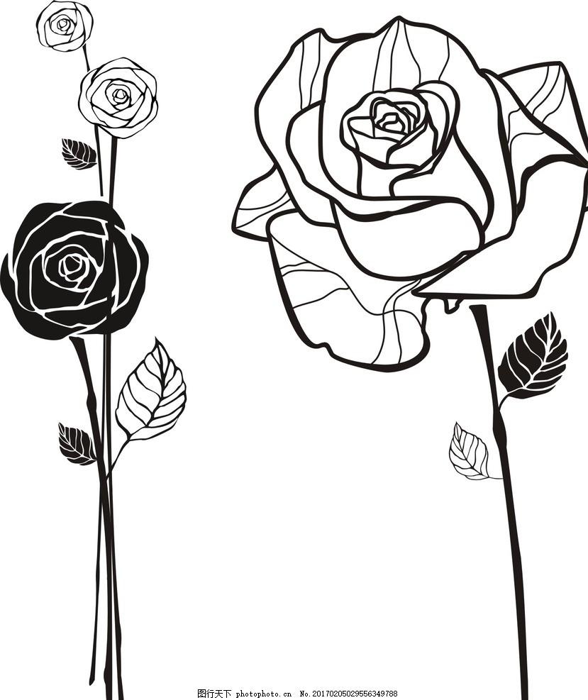 玫瑰花 线条 玫瑰花卉 欧式古典 手绘玫瑰 复古花卉 复古风格 怀旧