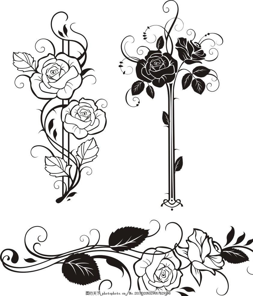 玫瑰花 线条 玫瑰花卉 欧式古典 手绘玫瑰 复古花卉 复古风格 怀旧 植