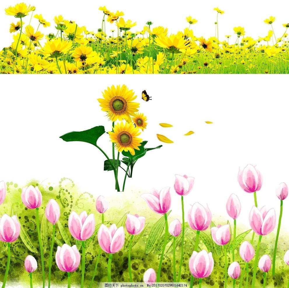 郁金香 向日葵 手绘 春天 矢量向日葵 矢量 黄色向日葵 黄色花朵 矢量花卉素材 向日葵素材 鲜花 植物 矢量素材 卡通矢量素材 花朵 花朵素材 向日葵 欧式向日葵 花朵时尚 葵花 向阳花 黄色 花卉 盛开 太阳花 矢量花朵 素材 鲜花花朵 郁金香 卡通郁金香 梦幻 唯美 设计 广告设计 广告设计 300DPI PSD