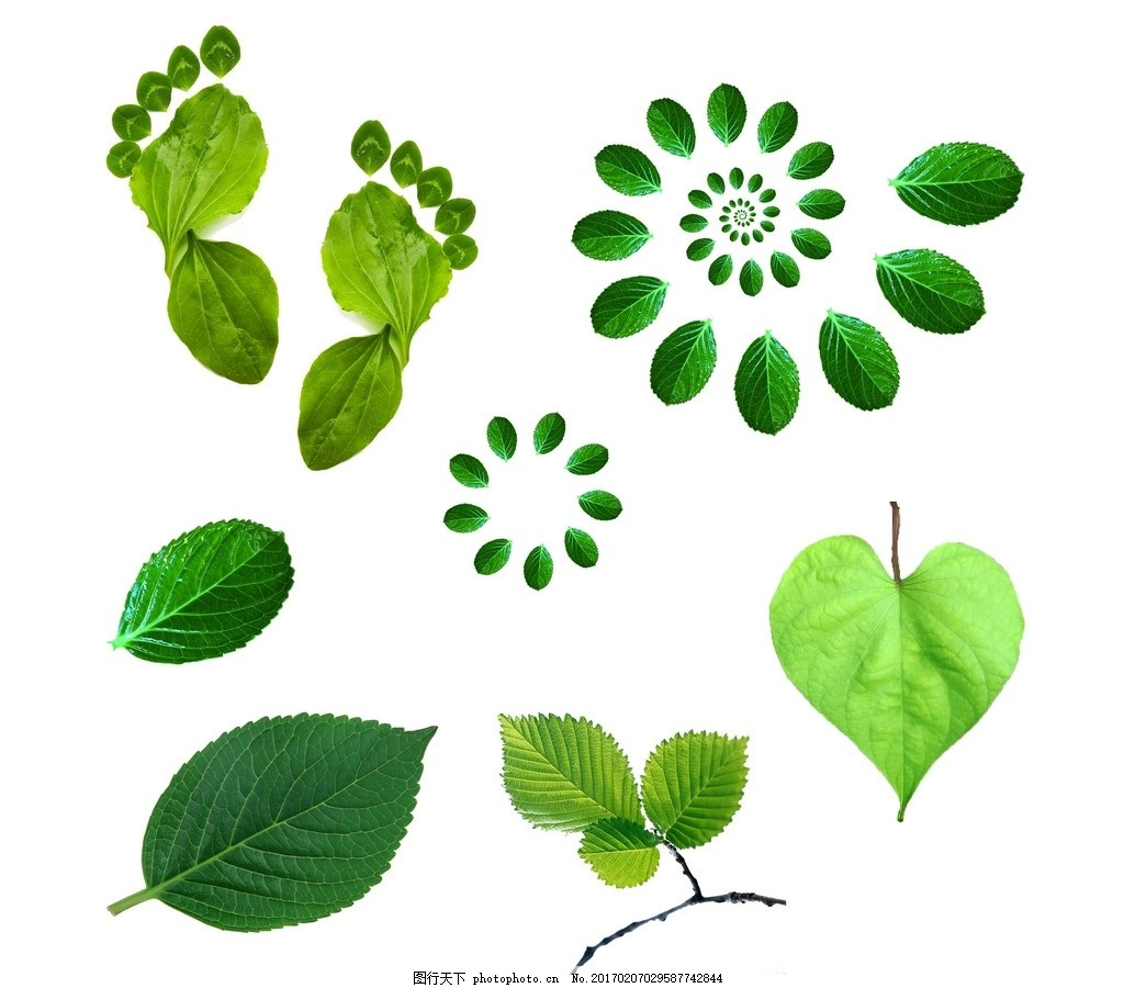 绿色 绿色树叶 梦幻树叶 绿色动感树叶 绿色树叶素材 唯美树叶 飞舞的