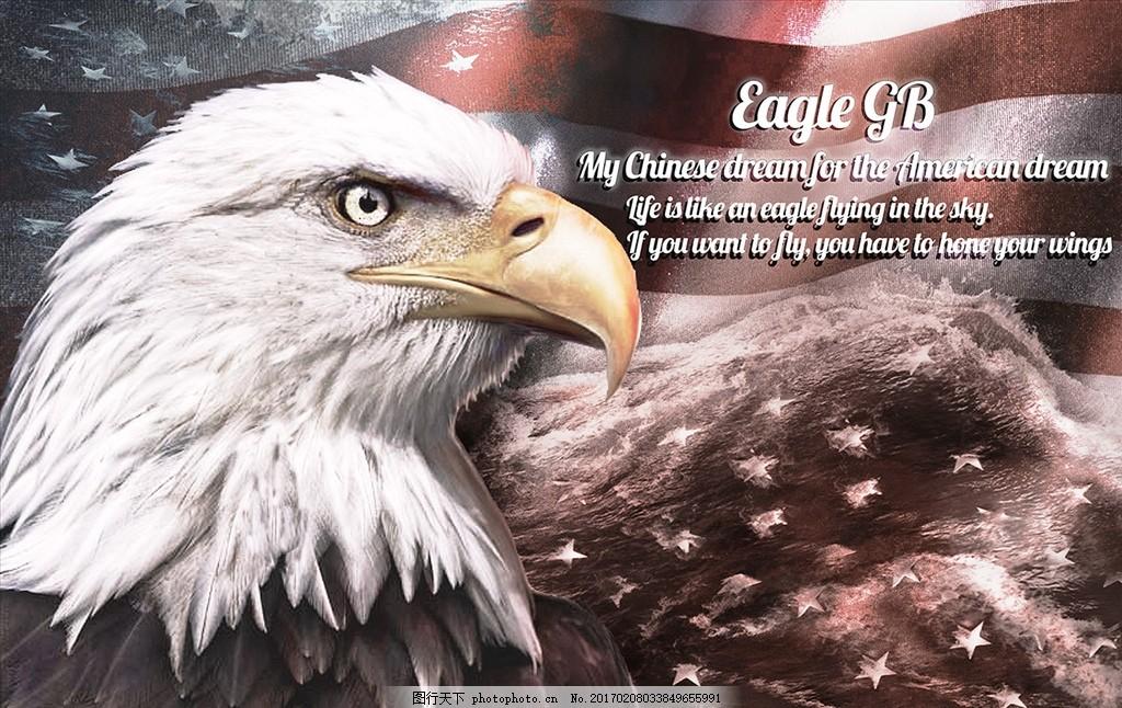美国鹰 美国 国旗 老鹰 大海 星星 励志 大雕 动物 字体 图片素材