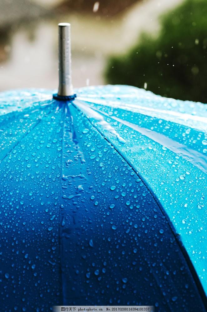 雨中的蓝色伞 雨中的蓝色伞图片素材 大伞 大雨 淋雨 下雨 雨天