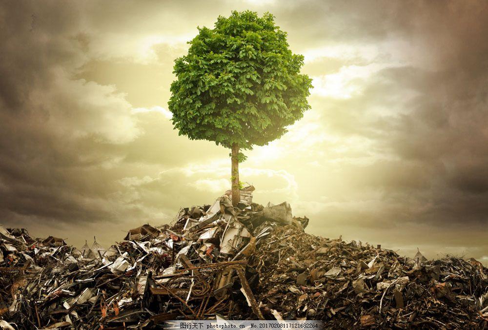 垃圾与树木图片素材 树木 大树 绿色环保 生态环保 环境污染 其他类别