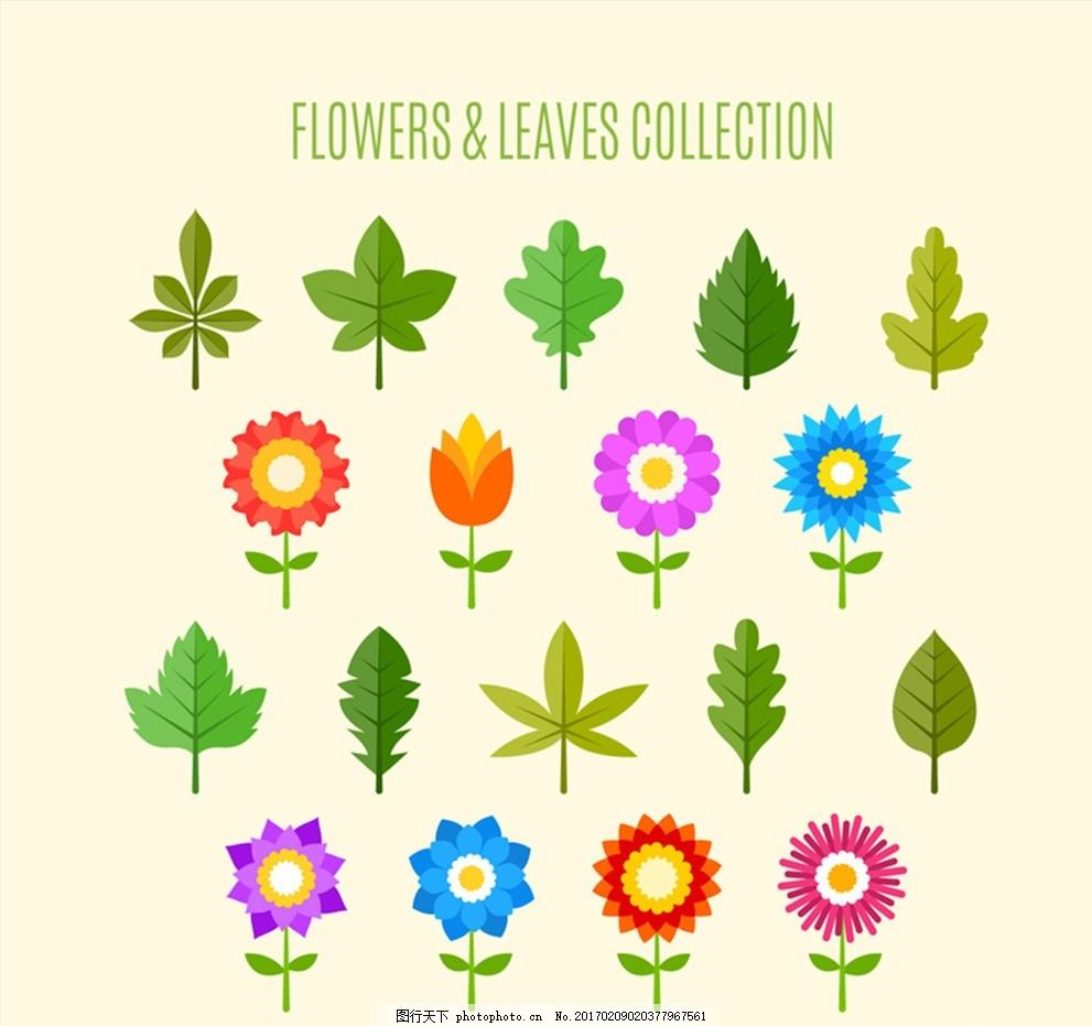 18款花朵和叶子设计矢量素材 扁平化 树叶
