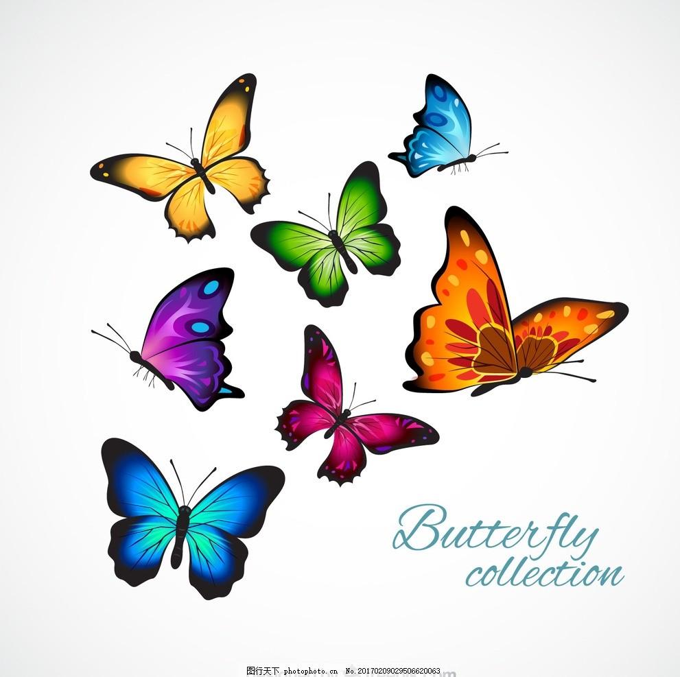 可爱蝴蝶色彩简笔画