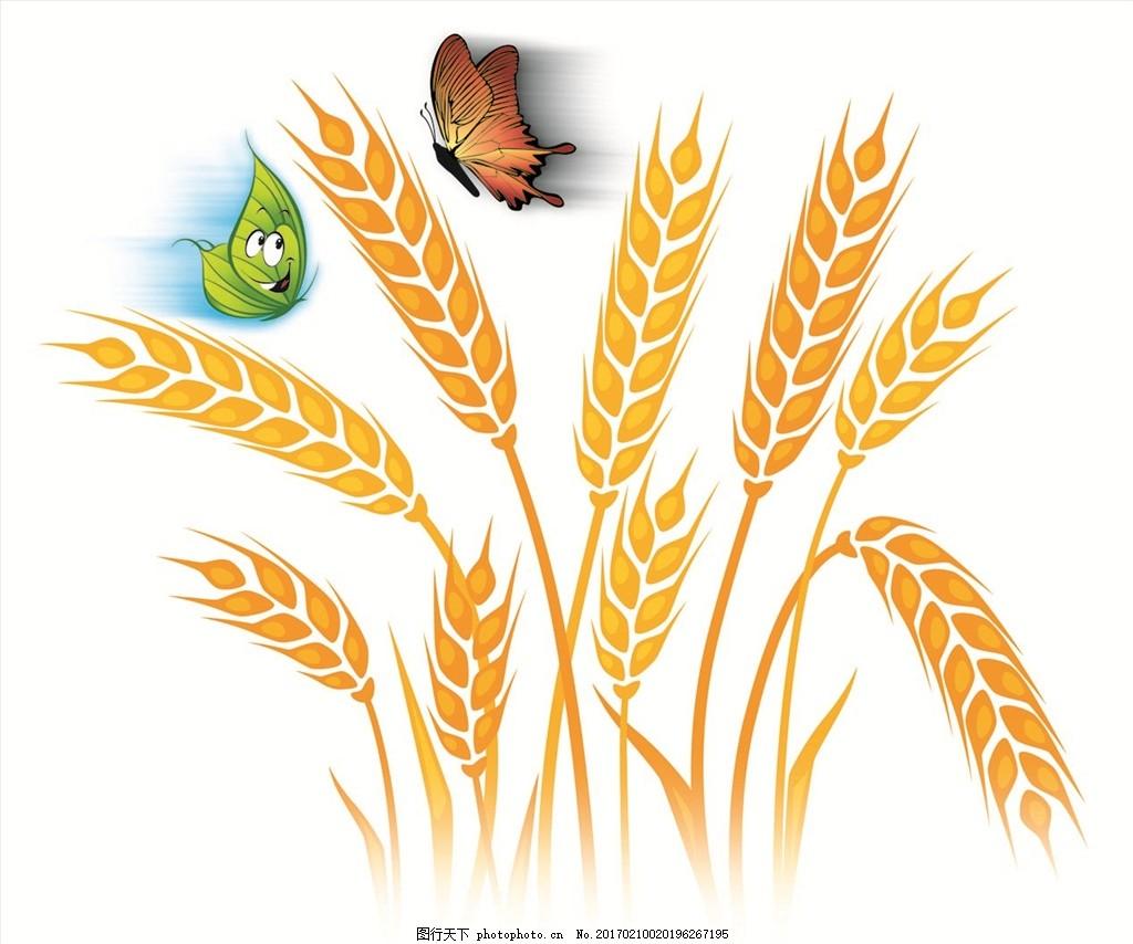 小麦茎横切图手绘图
