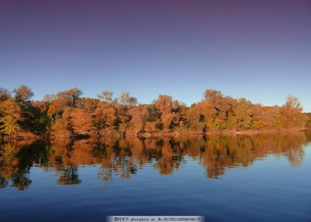 湖边的森林 森林树木 植物 湖泊 倒影 天空 阳光 秋天 泛黄