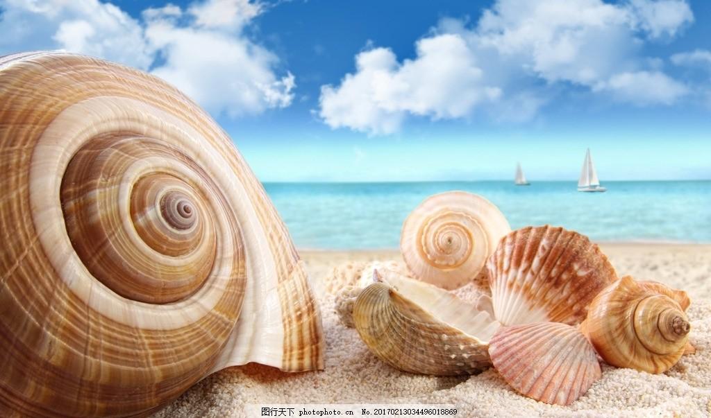 海的声音 海浪 蓝天 白云 贝壳 海螺 沙滩 摄影