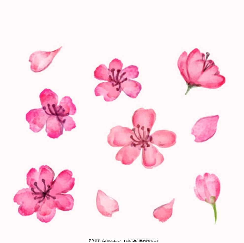 手绘水彩樱花花瓣集