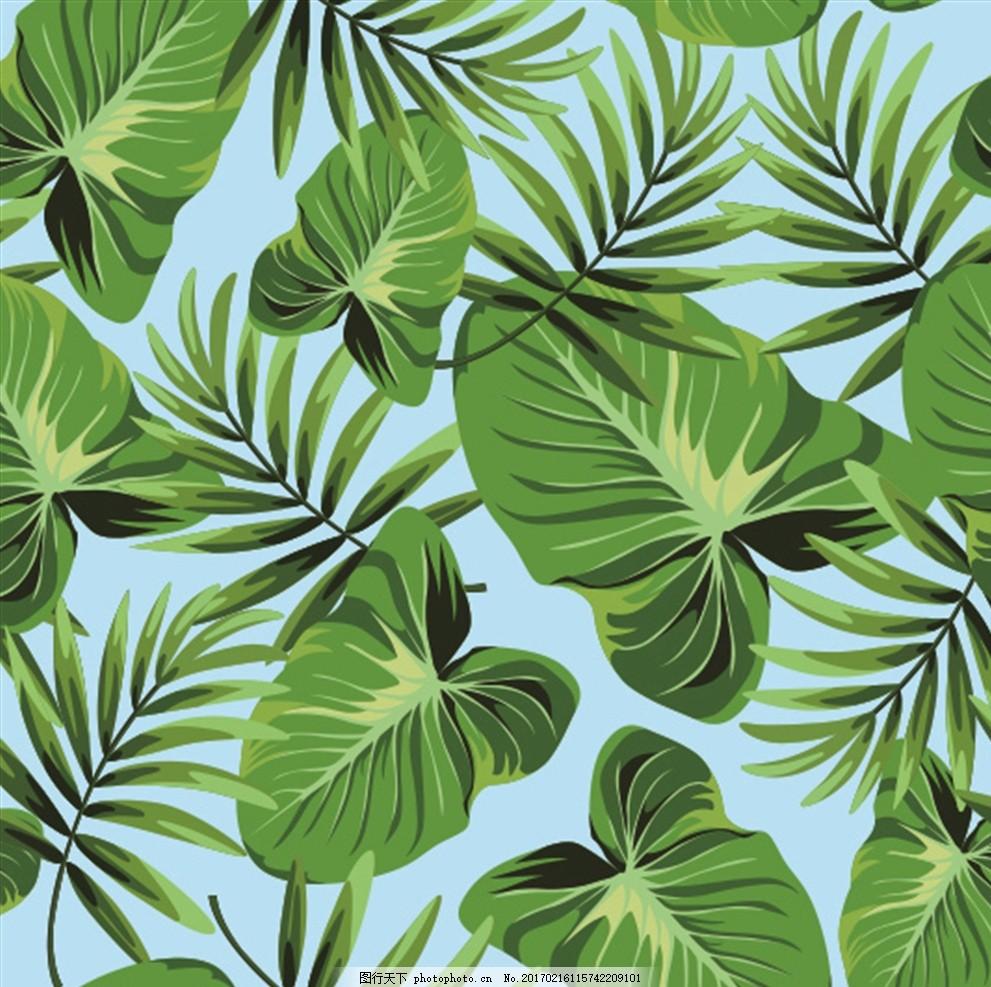 热带雨林植物背景 叶子背景 花纹 底纹边框 背景底纹