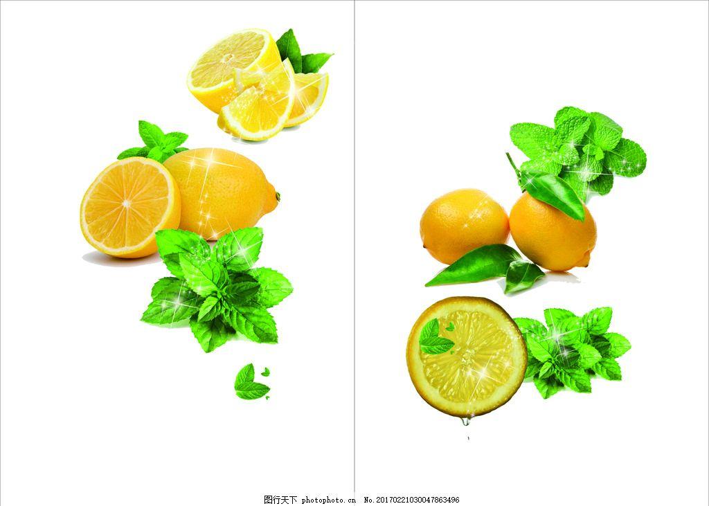 水果 柠檬薄荷 小清新 矢量图 柠檬 图类 设计 广告设计 海报设计 cdr