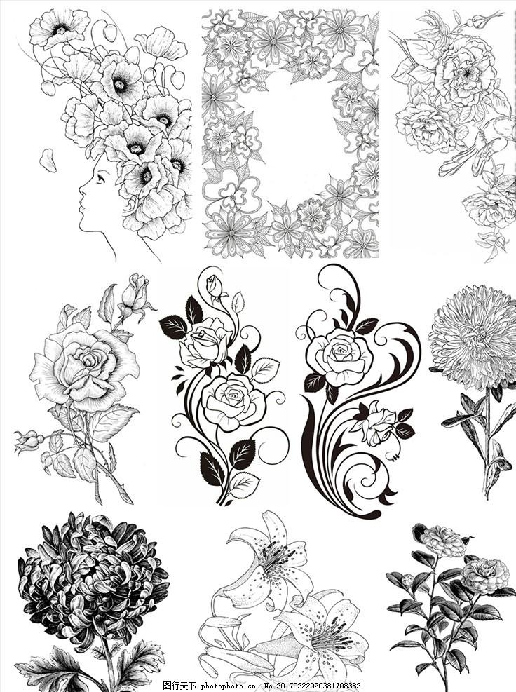 花边底纹 边花 花纹 底纹 图案 欧式 设计 边框 圆 花边 边角 菊花