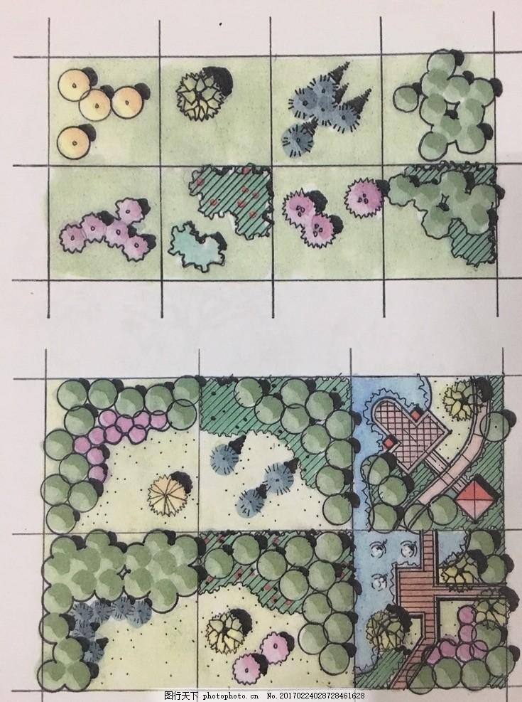 手绘平面图 景观 植物配置 彩平