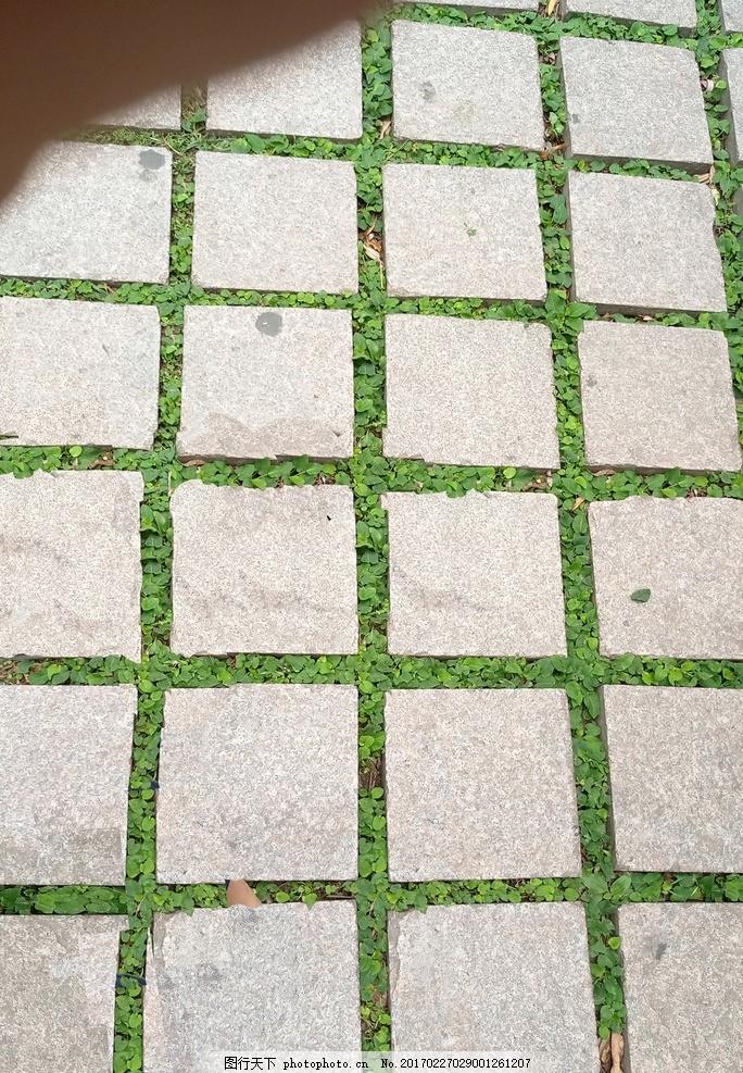 夏季地砖 公园地面 材质 贴图 绿色 生机 纹理 摄影 建筑园林