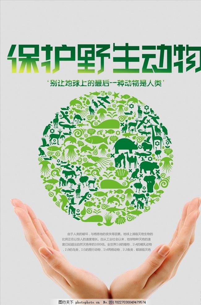 保护动物 动物园海报 保护野生动物 动物园展板 动物园广告 动物协会