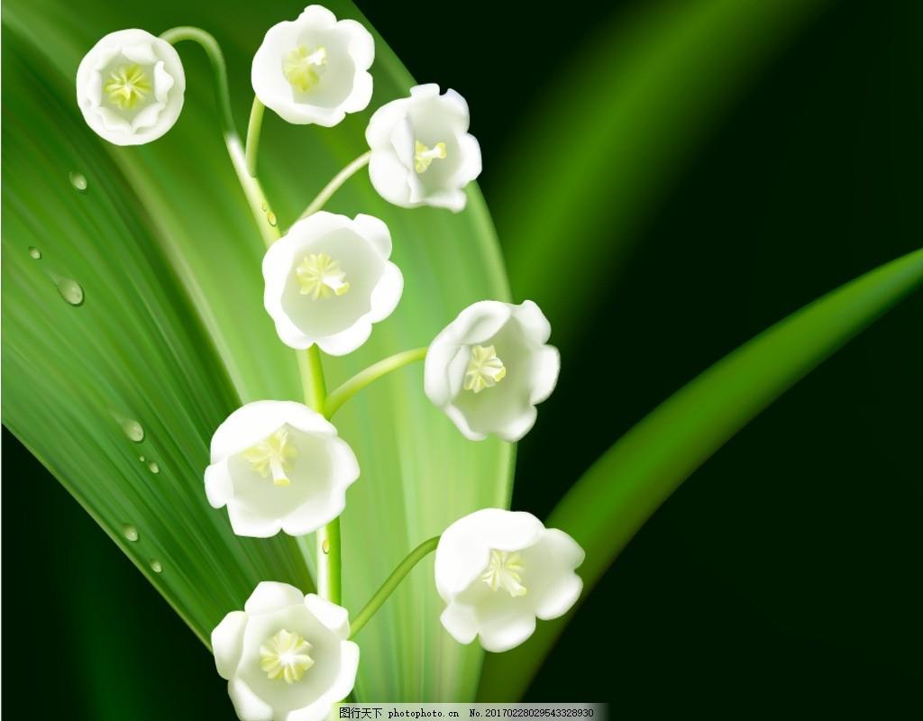 铃兰花 手绘花朵素材 矢量花朵 矢量素材 花藤 绿叶 叶子 矢量兰花