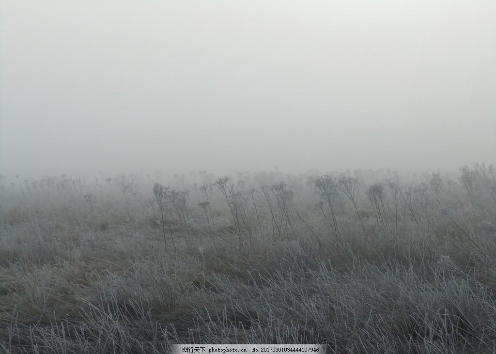灰蒙蒙 雾蒙蒙 枯草 凄凉 冬季 高清 摄影 地 摄影 自然景观 山水风景