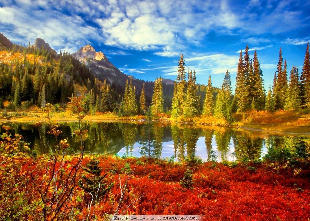 湖边秋景 摄影 风景 风景区 大自然 风光 枫叶 湖面