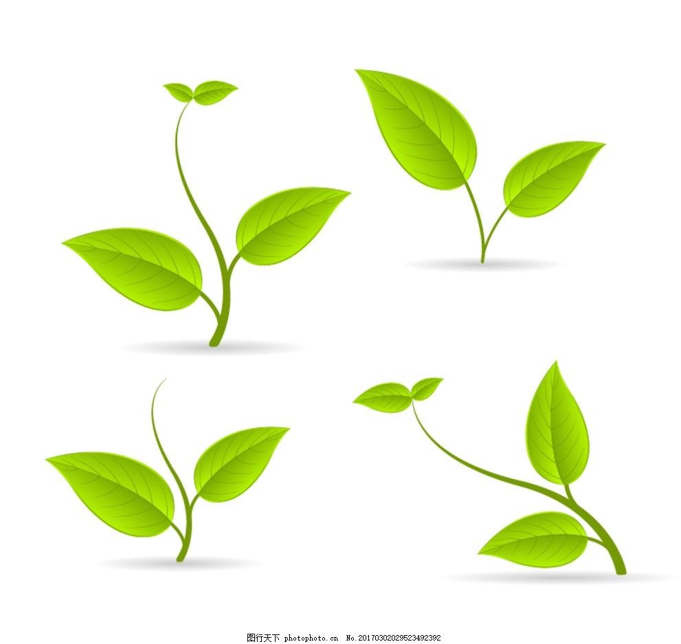 绿叶 树叶大全 梦幻 矢量树叶 春天树叶 叶子 青翠绿叶素材 春 树木