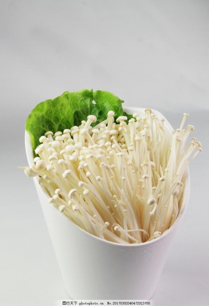 金针菇 食材