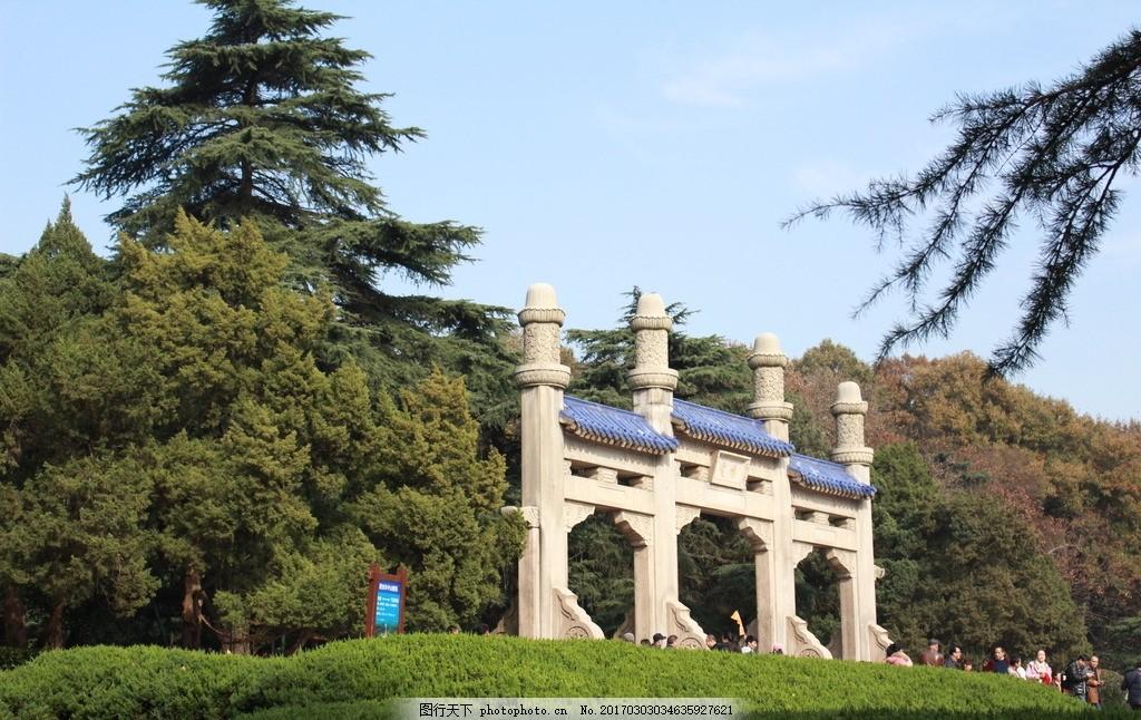 南京风景 南京建筑 中山陵 树木 大树 摄影