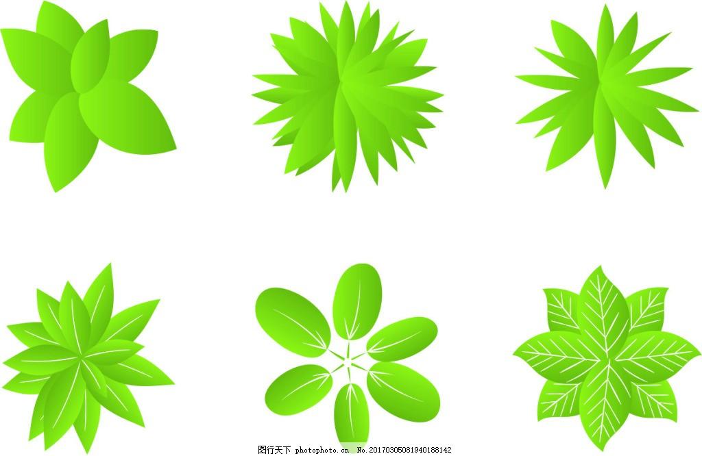 植物俯视图