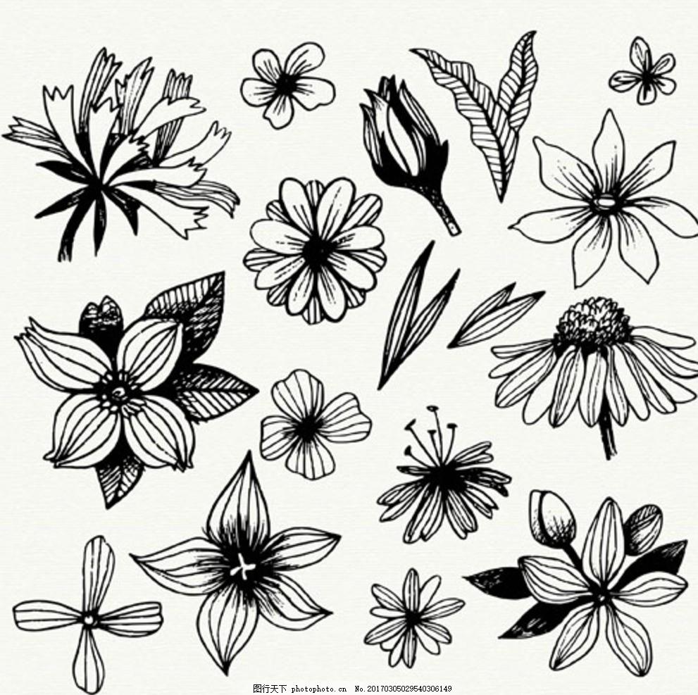 手绘黑白春季花卉线稿 春暖花开 春季促销 春季促销海报 春季大促销