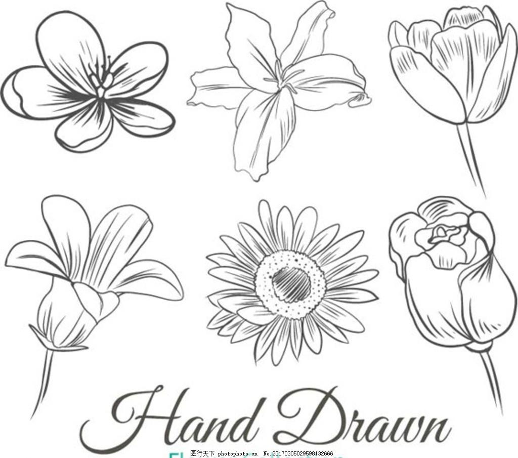 手绘线稿春季花卉元素