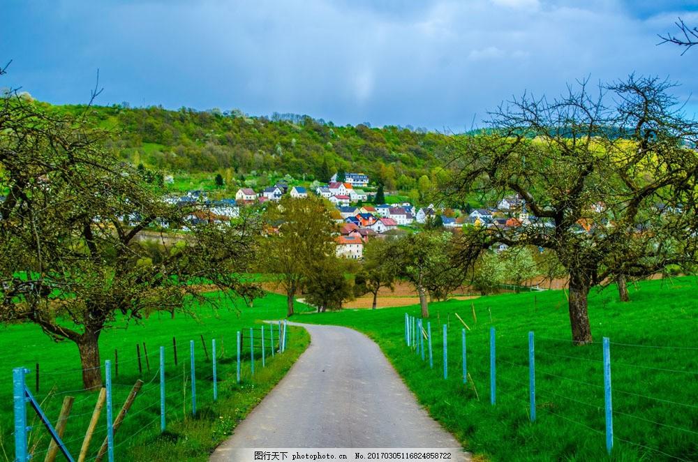 美丽果园风景 美丽果园风景图片素材 果树 乡村风景 道路 围栏