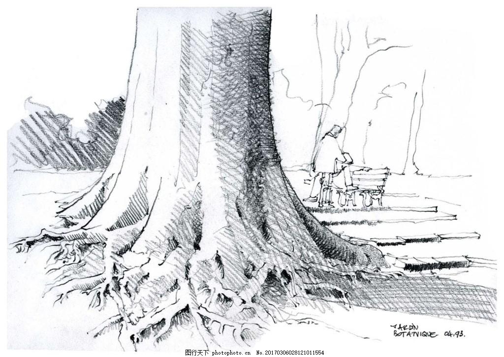 大树根部景观 树木 树干 分枝 能量 森林 绿色 环保