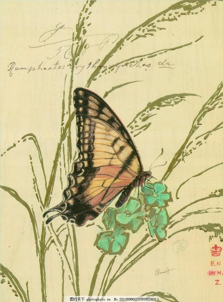 蝴蝶植物装饰画 花鸟 装饰 油画 三联画 蝴蝶 设计 设计 文化艺术