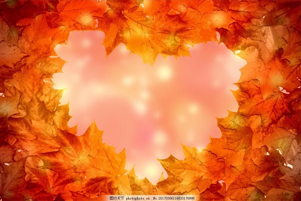 心形枫叶背景图片素材 秋天树叶 枫叶 落叶 黄叶 叶子 梦幻背景 底纹