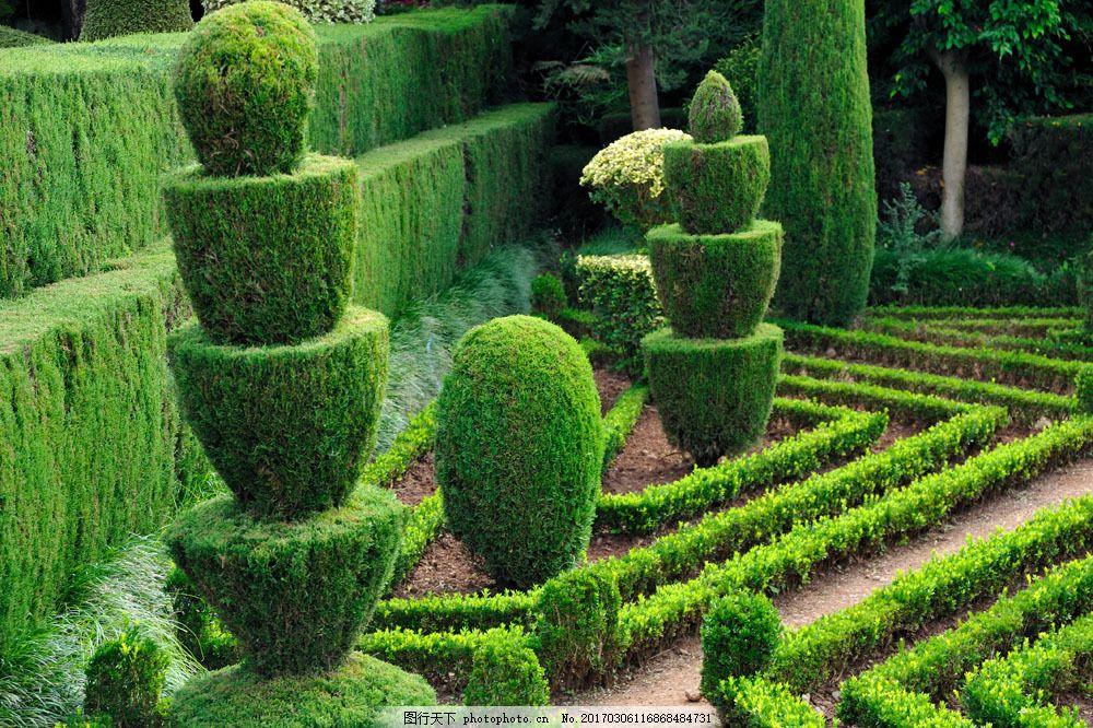 公园植物景观图片素材 公园植物景观 园艺 公园植物绿化 景观园林