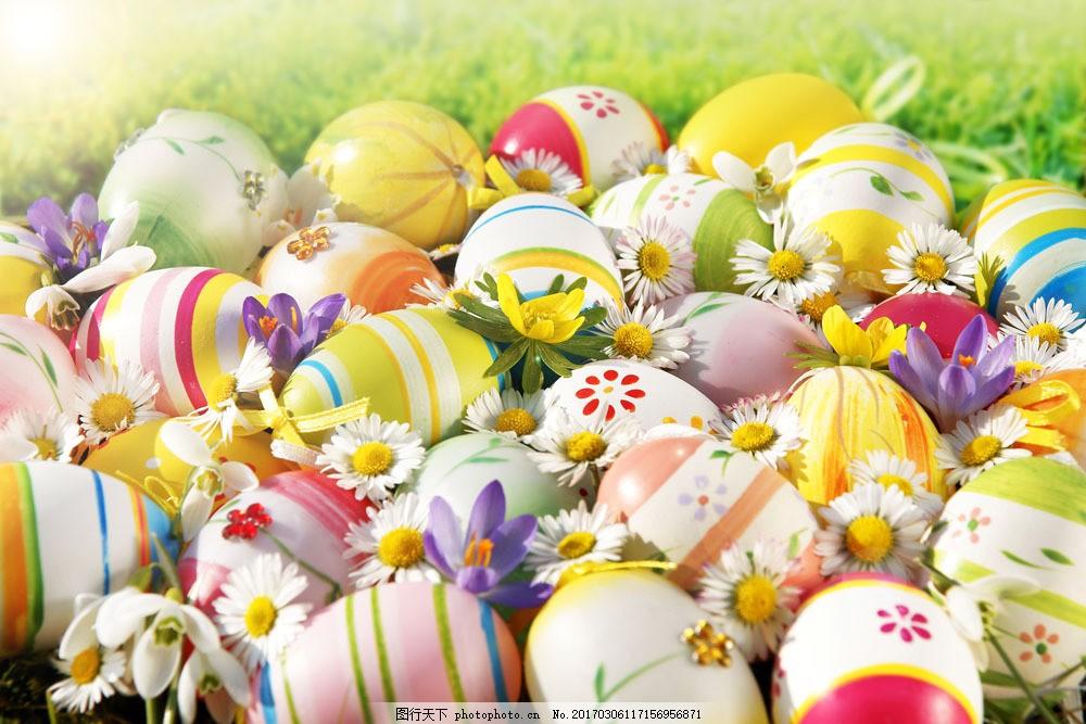 复活节可爱彩蛋与花朵图片