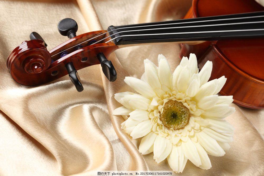 提琴与音符图片素材 小提琴 乐谱 音符 中提琴 花 鲜花 文化艺术 音乐