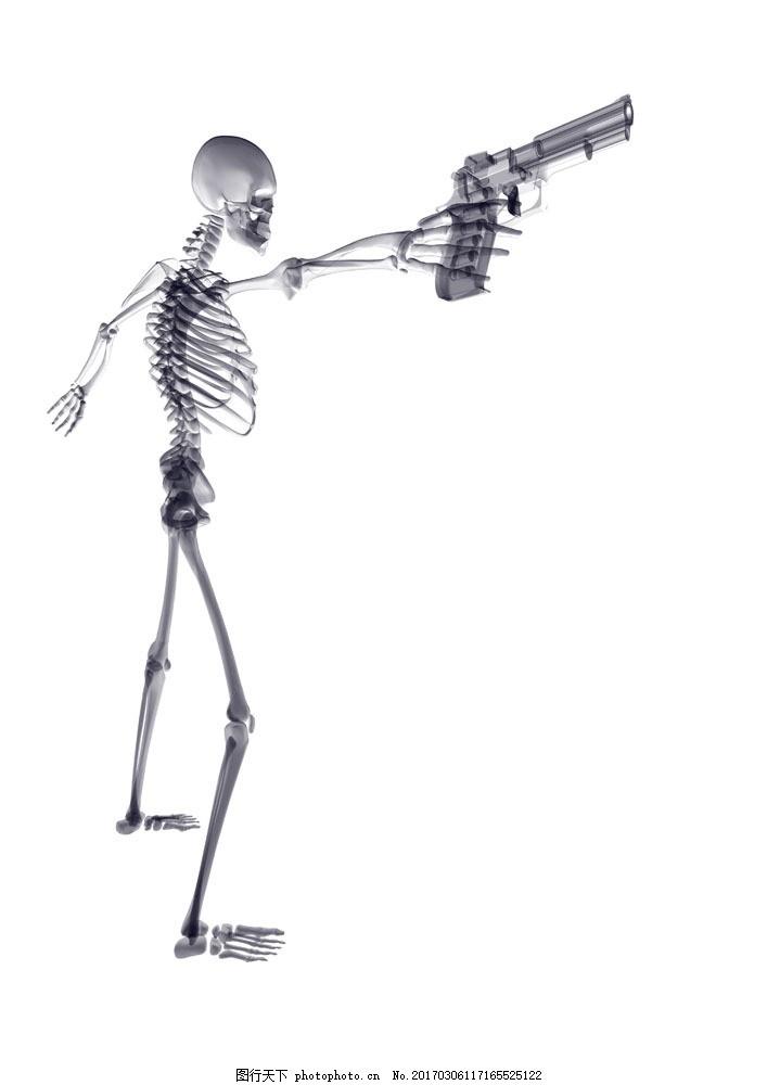 拿手枪的骷髅 拿手枪的骷髅图片素材 骨骼 人体结构 骨头 骨头组织